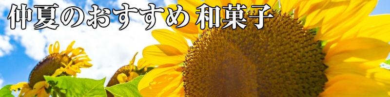 仲夏のおすすめ和菓子